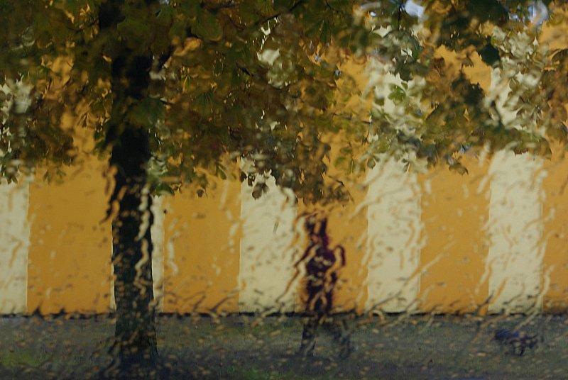 vihmane.JPG