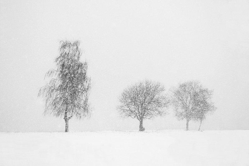 lumesadu2.jpg