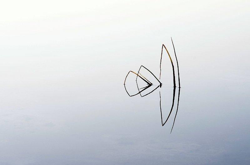 graafiline-2.jpg