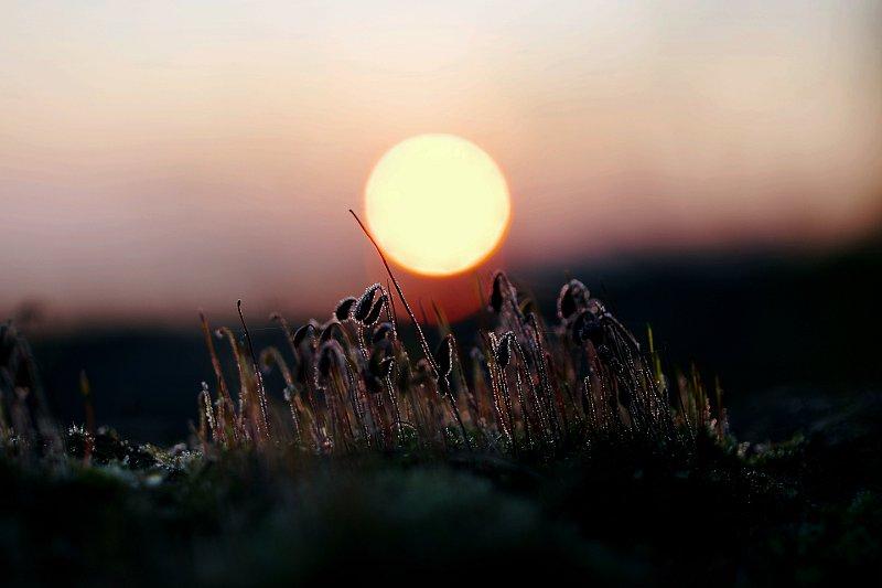 kylm-hommik1.jpg